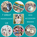 7 Great Independent UK Dog Accessory Brands