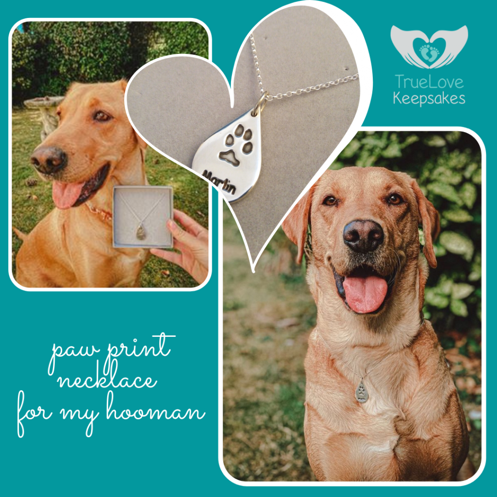 marlin the red fox labrador proudly posing with the teardrop silver paw print charm made for her mum