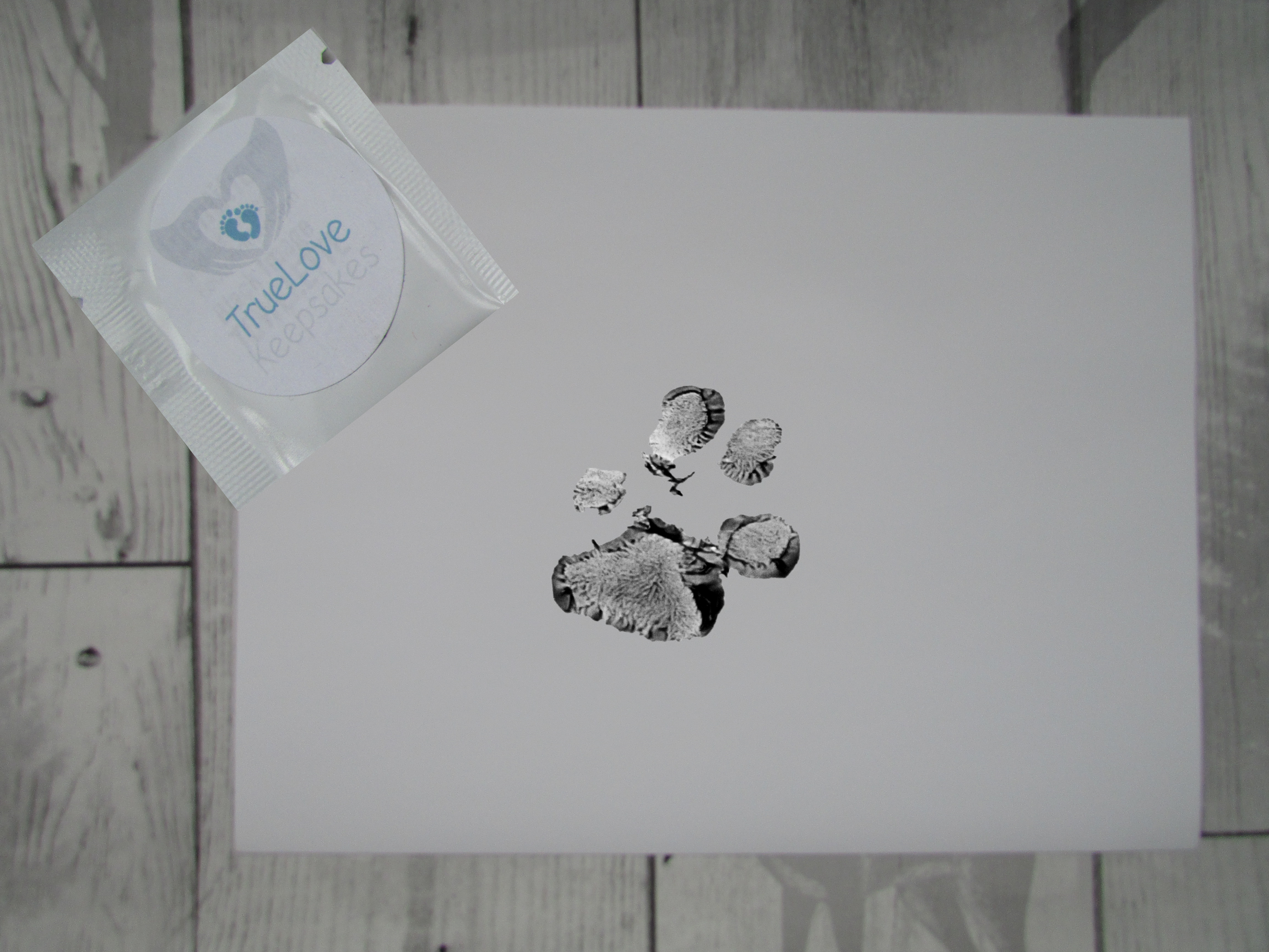 paw print kit inkless wipe and paper